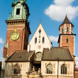 Wawel Cathedral, Krakow, Poland  — Stock Photo