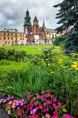 Wawel hill in spring — Stock Photo