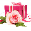 Pink gift box and a rose — Stock Photo