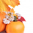 Yellow pumpkin with leafs — Stock Photo #33385667
