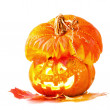 Jack o'Lantern on white background — Foto Stock