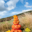 Carved pumpkins by the field — Stock Photo