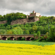 Rudelsburg castle  — Stock Photo