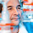 Senior scientist works in chemical lab — Stock Photo
