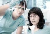 çalışan iki kadın bilim adamları — Stok fotoğraf