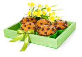 Green wooden box with choco chip muffins and daffodils — Stock Photo