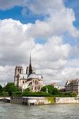 Ile de la Cite in Paris — Stock Photo