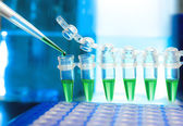 Samples for DNA amplification — Stock Photo