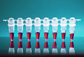 Samples for DNA amplificatio — Stock Photo
