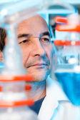 Vedoucí vědecký pracovník pracuje v chemické laboratoři — Stock fotografie