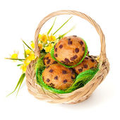 Basket with muffins and spring flowers — Stock Photo