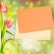 Tulips alongside an orange envelope on white background — 图库照片