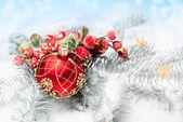 Rex Christmas bauble — Stock Photo