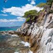 Seagulls by rocky shore in Sithonia, Northern Greece — Stock Photo #33408903