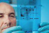 Scientist checks results — Stock Photo