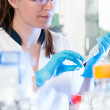 Stock Photo: Young scientist in lab