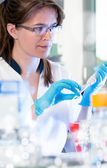 Young scientist in the lab — Stock Photo