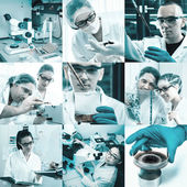 Scientists at work, collage — Stock Photo