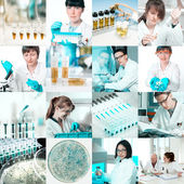 Microbiologists at work, collage — Stock Photo