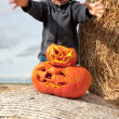 Stock Photo: Boy and halloween pumpkins