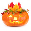 Halloween pumpkin on white background — Stock Photo