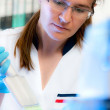 Stock Photo: Scientist works in modern laboratory