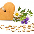 Gingerbread cookies shaped as hearts — Stock Photo