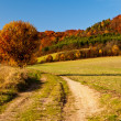 Golden Autumn in German countryside — Stock Photo #33482465