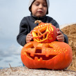 Boy and halloween pumpkins — Stock Photo #33482757