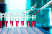 Loading samples for DNA amplification — Stock Photo