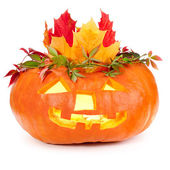 Halloween pumpkin on white background — Stok fotoğraf