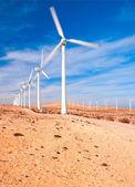 Windmills in the desert — Stock Photo