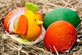 Easter eggs, eggshell and hatched chicken — Stock Photo