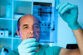 Senior scientist analyses Western blot — Stock Photo