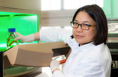 Oriental scientist works in the lab — Stock Photo