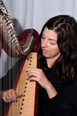 Serious musician plays Irish Harp — Foto Stock