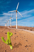 Rusty windmills working — Stock Photo