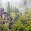 Saxische Schweiz mountains in autumn mist — Stock Photo