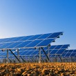 Solar panels for power production — 图库照片