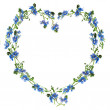 Heart made from forget-me-nots — Stock Photo