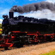 German Steam Train — Stock Photo