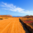 Stock Photo: Road towards North of Island Graciosa, Canaries, Spain