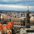 Bird view over Dresden — Stock Photo