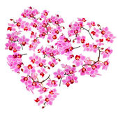 Heart made from Phalaenopsis orchids — Stockfoto