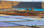 Salt fields Las Salinas de Janubio, Western Lanzarote, Canary islands, Spain — Stock Photo
