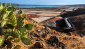Las Salinas de Janubio, Western Lanzarote, Canary islands, Spain — Stock Photo