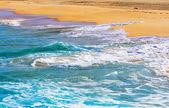 Graciosa, îles canaries, plage de las conchas — Photo