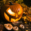 Halloween pumpkin outdoors — Stock Photo