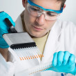 Stock Photo: Young biologist with multichannel pipette