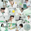 Stock Photo: Scientists work in laboratory